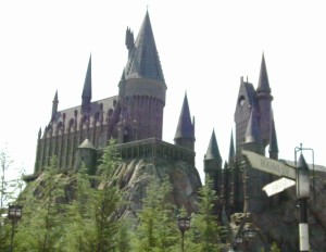 The line at the Harry Potter ride in Orlando can be intimidating but is absolutely worth the wait. Photo credit: L. Tripoli