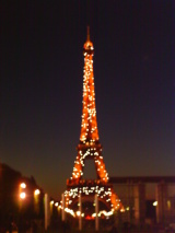 Paris thrills no matter how bad the film. Photo credit: L. Tripoli