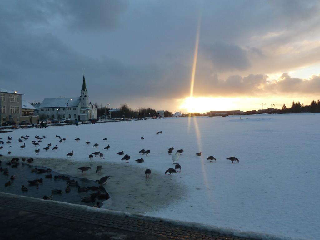 Sunset in Reykjavik Photo credit: M. Ciavardini