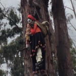 Figures suspended from a tree in Cusco, Peru Photo credit: M. Ciavardini