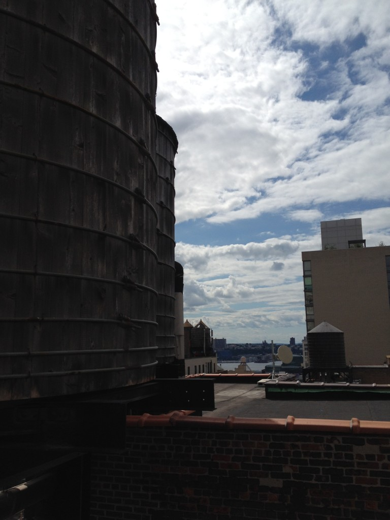 Enjoying a sunny afternoon from the rooftop of Homewood Suites in Midtown Manhattan Photo credit: M. Ciavardini