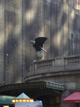 Grand Central eagle