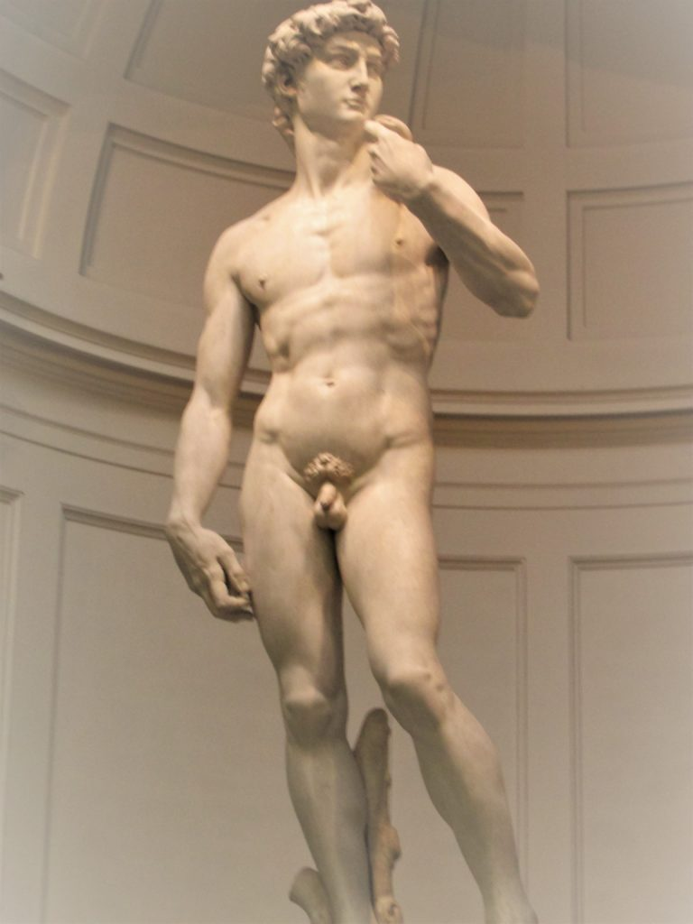 Michelangelo's David in Florence (Firenze), Italy. Photo credit: M. Ciavardini