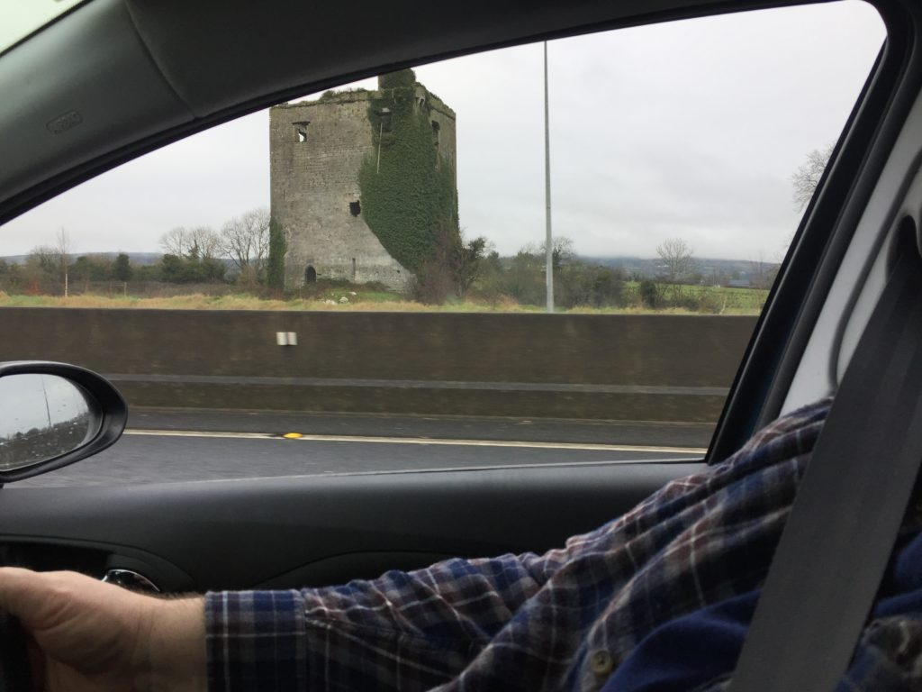 You never know what you might see on the side of the road in Ireland. Photo credit: L. Tripoli