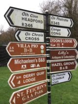 Even the signs in Ireland can get complicated. Photo credit: M. Ciavardini