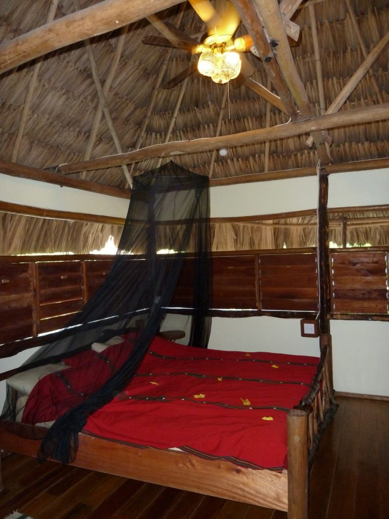 Guests at the Cotton Tree Lodge in Punta Gorda, Belize can sleep easily and wake up to the big voices of howler monkeys. Photo credit: M. Ciavardini