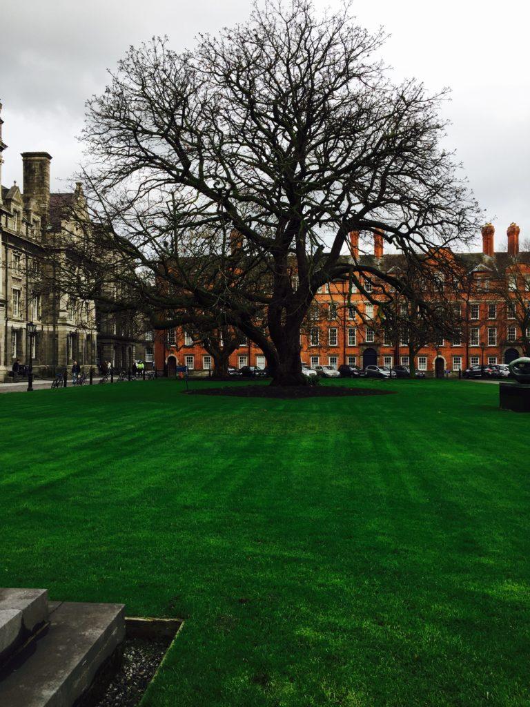 Trinity College campus, home to the Book of Kells, in Dublin, Ireland. Photo credit: M. Ciavardini.