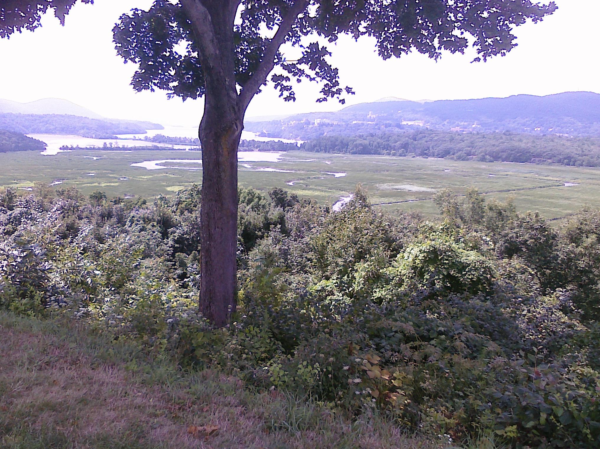 boscobel-hudson-river-view-CIMG0075.jpg