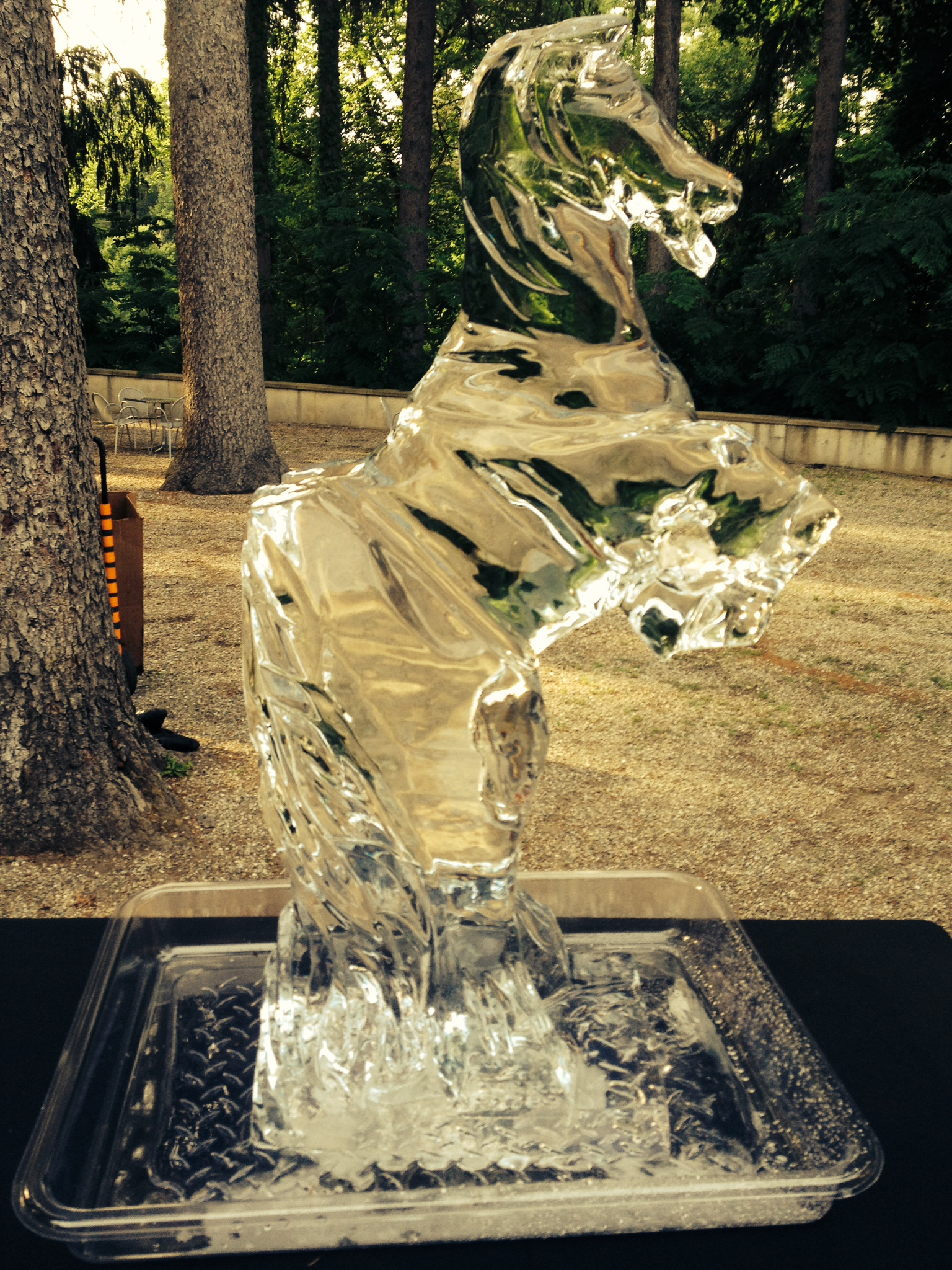 katonah-museum-of-art-ice-horse.jpg