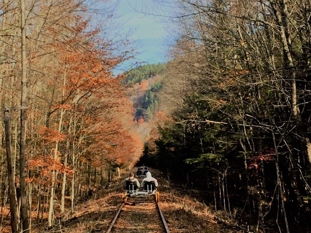 Rail Biking Near Lake George Bashfuladventurer Com